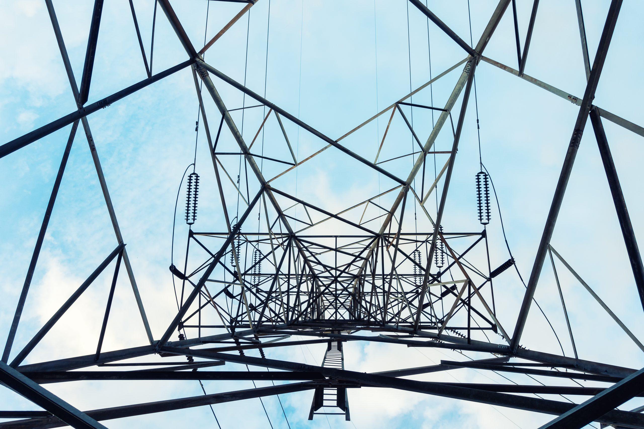 Flex assets to reduce renewable portfolio risk